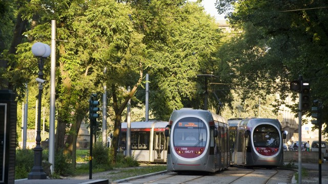 Florence trams